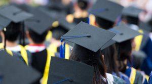Fresh Graduate_UMB
